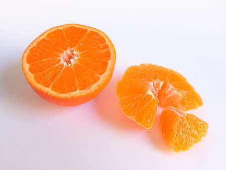 dissection: dissection orange