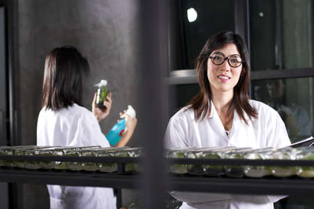 Laboratory working, Two scientist working in a lab. photo