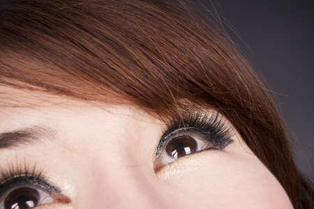 eyelash, close-up female model eyelash with mascara on.  photo