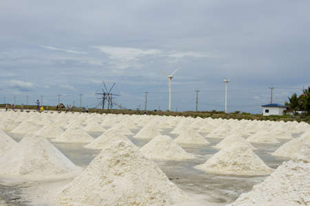 salt flat: salt process, salt in salt field processing to dry Stock Photo
