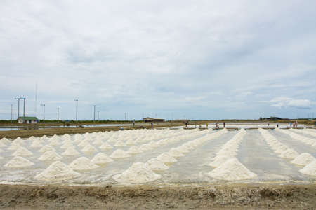 salt field, large salt field in Thailand photo