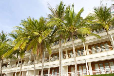 beach estate, beach condominium with coconut palm tree at front
