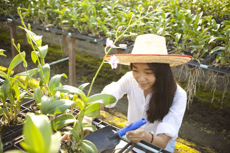 girl gardener, Young Asian girl wearing weave hat active in orchid farm Stock Photo