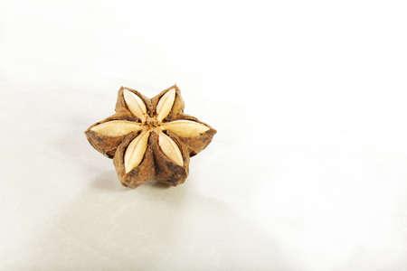 サシャ インチ ポッド、サシャ インチと呼ばれる白と茶色の種子 写真素材
