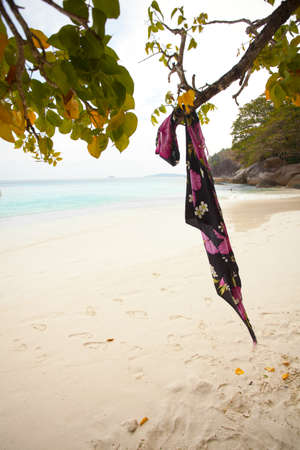 hanging scarf, hanging painted pink flower scarf on a tree at the beach photo