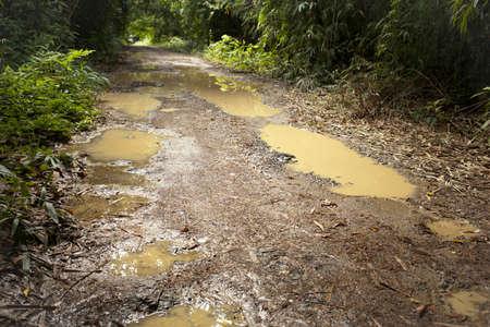 scrambling: strada fangosa, pneumatico traccia su stagno fangoso su strada sterrata