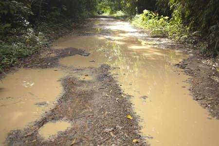 muddy tracks: muddy road, tire track over muddy pond on dirt road