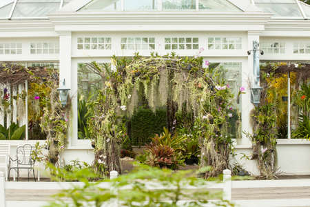 glass house, white glass house plantation garden with tree decorated photo