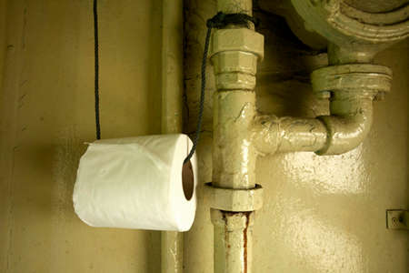 thoughtless: tissue paper, thoughtless tissue paper roll hanging with pipe in toilet