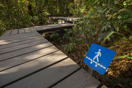 trail signage, walk bridge trail blue signage in forest photo