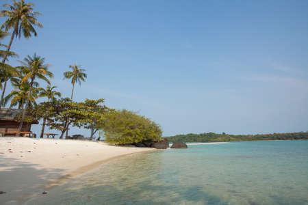 trad: Thailand beach, beautiful scene of Thailand beach with coconut palm tree in Koh Mak, Trad