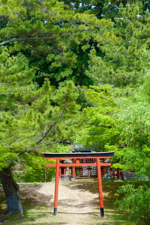 remark: Shrine Symbol, Red torii pole among forest trees makes remark of Shrines in public by water, Japan Editorial