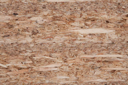 crosscut: plywood, texture of crosscut surface compressed plywood Stock Photo