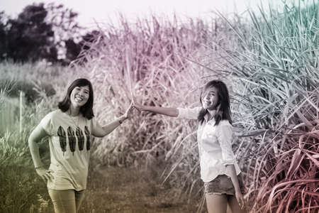 sugar cane farm: sisters in nature, female Asian sister happy together in sugar cane farm
