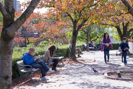 2015 - 11 Nov, Tennoji Park in Autumn, Tennoji park is a community service area for Osaka people tourist families or handicap come enjoy their Sunday, Osaka, Japan. Redakční
