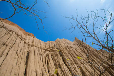soil erosion: Land Texture with plant of soil erosion called earth pillar in Nan, Thailand