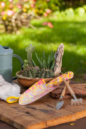 Mini cactus garden put with stone arranged in wide pot or round ceramic tray with garden tools Stock Photo