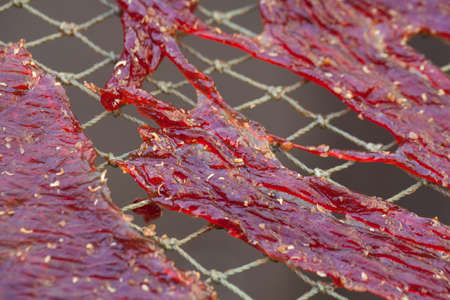 food preservation: Close up texture of seasoning sun dried beef using local procedure of food preservation in Thailand.