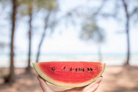 A hand having red watermelon by the sea in sunny day. Stok Fotoğraf
