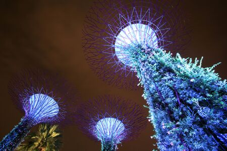 Singapore - JULY 9, 2017 : Supertree garden at night, garden by the bay.
