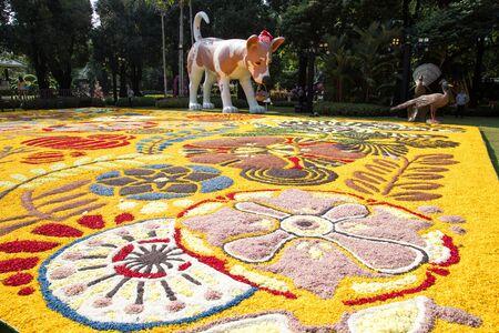 BANGKOK, THAILAND - February 23, 2019 : The art of flowers on the floor at Park Nai Lert Heritage Home in Nailert Flower and garden Art Fair.