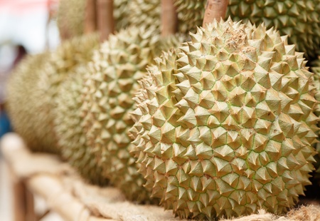 durian fruit on the market in thailand photo