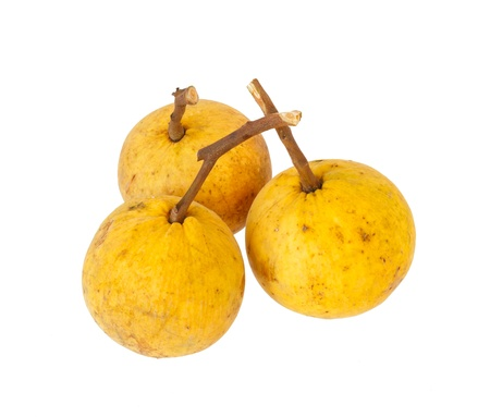 baclground: santol fruite isolated on white baclground