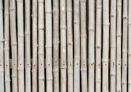 thai style bamboo fence and background photo