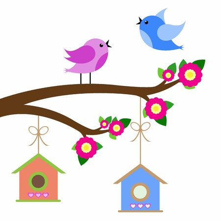 bird house: birds colorful and birdhouse on tree branches.