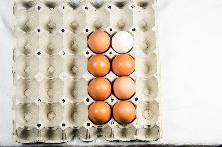 speckle: egg on paper tray Stock Photo