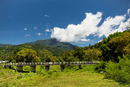 fur trees: landscape with mountains trees at Kiriwong village, Nakorn Sri Thammarat., Thailand.