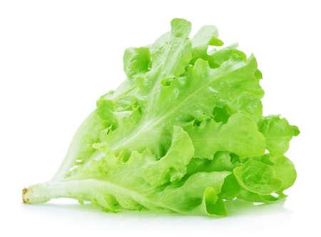 Green oak lettuce on white background Archivio Fotografico