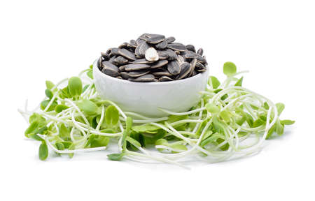 sunflower seeds and sunflower sprouts on white background