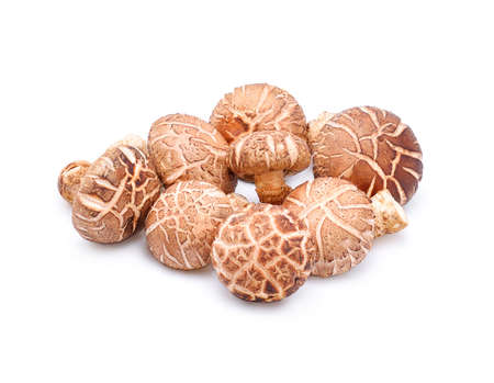Shiitake Mushrooms on white background