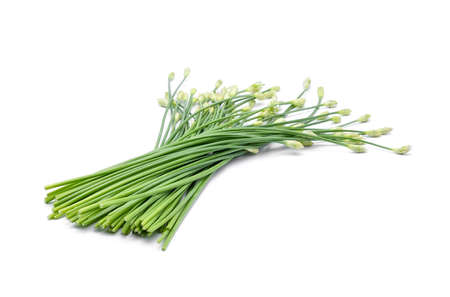 alliaceae: Chinese chives on white background