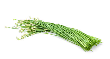 Chinese chives on white background