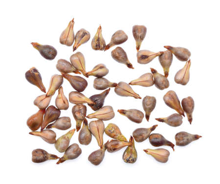grape seeds on white background