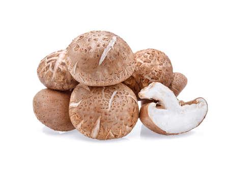 Shiitake Mushrooms isolated on white background Archivio Fotografico