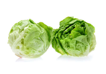 butterhead lettuce isolated on white background Banque d'images