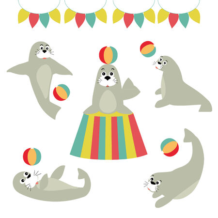 aquatic animal: Seal Lion Vector Art