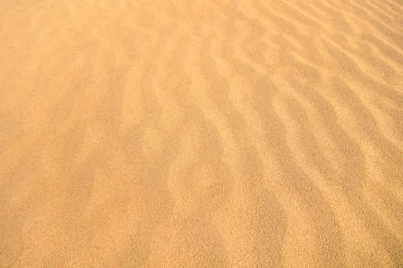 sandy beach: Desert sand dunes as waves natural  background molded by the wind - Sandy orange beach endless view
