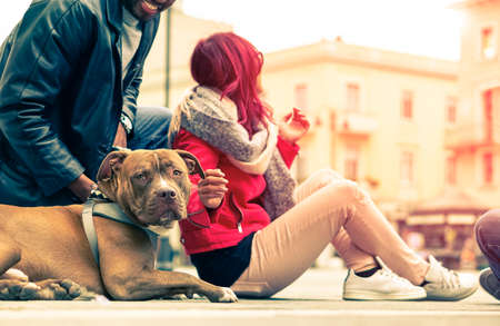sitter: Couple with dog breed pit bull red nose relaxing in old town - Modern mixed carefree family - Concept of friendship between humans and animals - Cropped composition  vintage filter look with sun halo Stock Photo