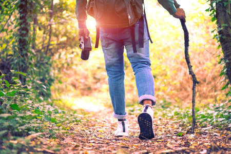 Reizen en wandelen langs het bos - Jonge man wandelen in het bos en met een stok - Concept van avontuur, wandelen en wandelen