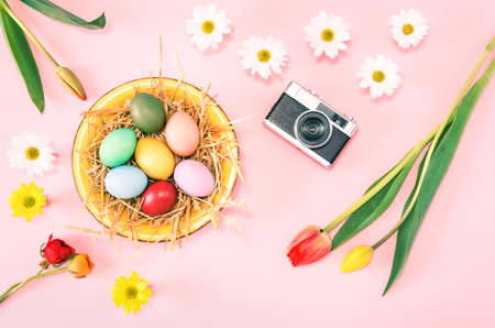 Colorful Easter eggs on pink background with vintage camera and  flowers flat lay  top view - Spring holidays concept
