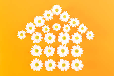 Daisies house shape on orange background - Fresh floral home icon simple minimal design on dark golden color with copy space - Springtime concept environmental friendly