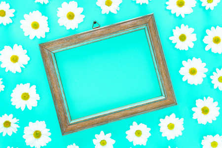 Spring floral frame on  blue cyan background with white daisies texture all around - Fresh flowers composition acuamarine color flat lay top view with copy space - Springtime and summer concept