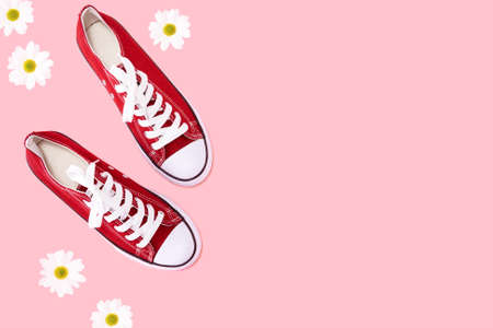 Red sneakers on pink background with daisies top view shot - Everyday   trendy shoes flat lay overhead mock up with copy space - Spring and summer concept of outdoor life activities