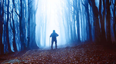 Man in misty forest walking to blue light - Sunbeams through dark woods lighting the hiker along path in foggy day at fall season - Seasonal concept of outdoor  healthy activity - Bluish filter image