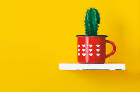 Cactus on shelf in vintage red cup with heart shape on orange background - Succolent blue candle plant potted in old enamelled mug on yellow interior wall - Concept of recycling and design - Image Stock fotó