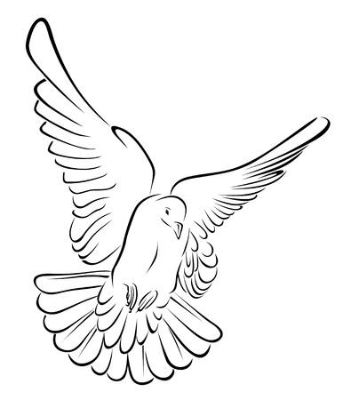 piccione in illustrazione vettoriale tratto di pennello Vettoriali